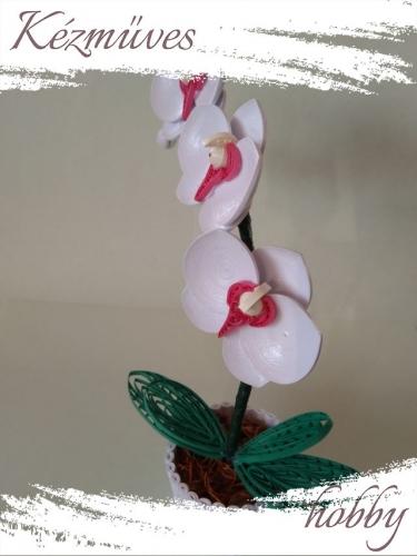 Quilling ajándék - Cserepes kisvirágok - Fehér orchidea - Quilling Cserepes kisvirágok
